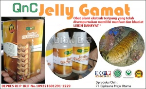 Agen obat alami qnc jelly gamat garut